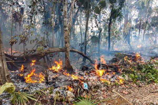 Incendio forestal en España puede agravarse