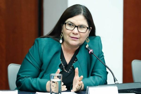 Imelda Castro buscará fortalecer la Cuarta Transformación