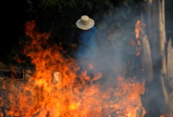 amazonas incendios fotos