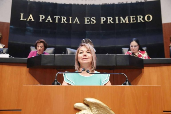 Minerva Hernández comprobantes fiscales irregulares