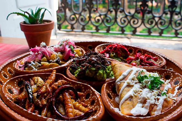 México_principales_productores_insectos_comestibles_mundo