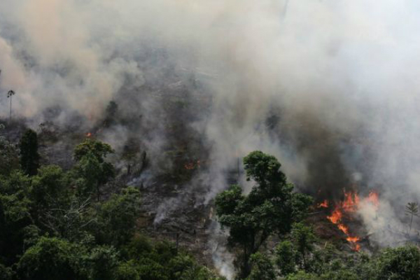 incendio_amazonas_gobiernos_apoyo