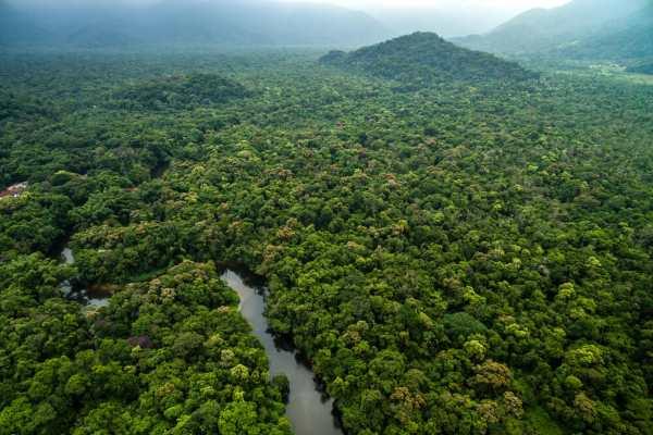 ¿Dónde se encuentra el Amazonas y por qué es tan importante?
