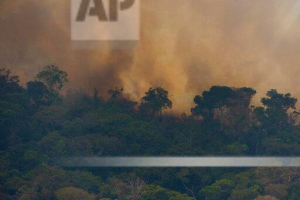Amazonas, incendio, selva, Gerardo Cevallos, cambio climático,