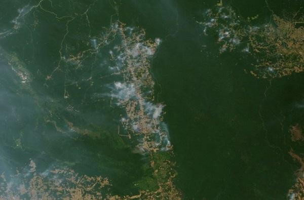 De acuerdo con las imágenes, el penacho de monóxido de carbono crece en la región noroeste de la Amazonia y luego se desplaza en una columna más concentrada hacia la parte sureste de Brasil. Foto: Especial
