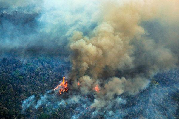 Reportan_incendios_Amazonía_suman_más_79mil_brotes