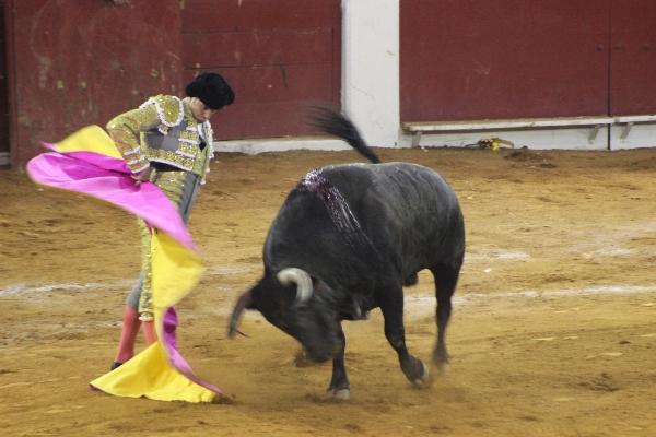 corrida de toros