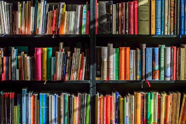 Los libros serán desde nivel preescolar hasta secundaria; se repartirán con el apoyo de la Secretaría de Cultura. Foto: Pixabay