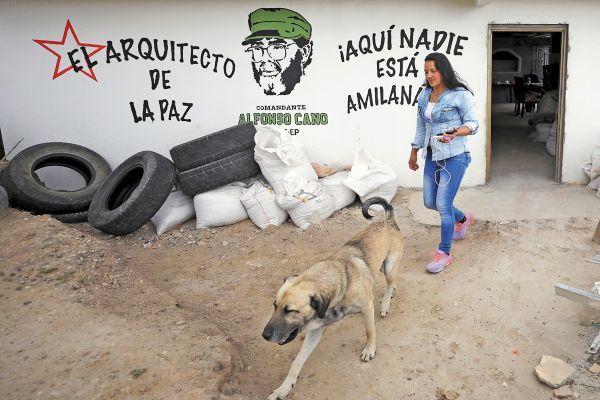 Decenas de guerrilleros de las FARC se desmovilizaron en el proceso de paz. Foto: AP