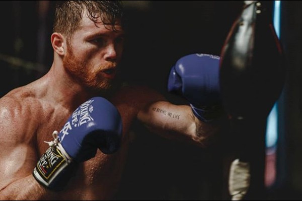 canelo_box_recor_chepo