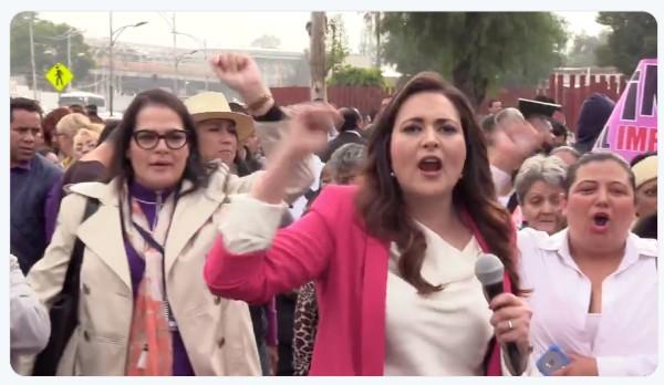 La diputada federal del PRI, Cynthia López Castro, durante la manifestación pacífica en la Cámara de Diputados en contra del impuesto para las ventas por catalogo.  FOTO: ESPECIAL