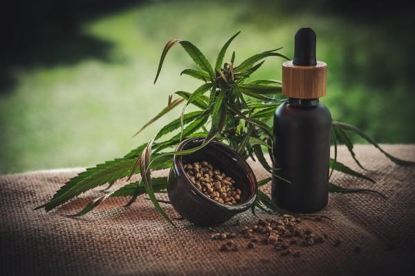 cannabis_marihuana_medicina_enfermos_baja_california