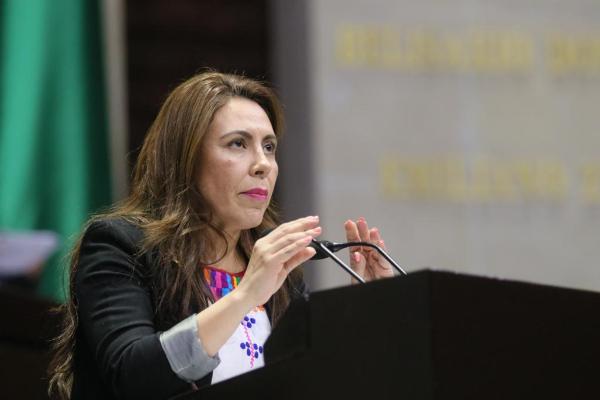 Rocio Barrera evasión fiscal crimen organizado