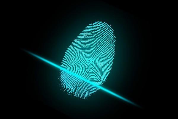 El micrositio de información será manejado por Ciencias Forenses. Foto: Pixabay