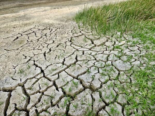 Los ecologistas critican la posición del gobierno australiano de continuar con los proyectos para expandir la industria de combustibles fósiles. Foto: Pixabay