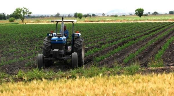 El incremento en el costo afectaría a los agricultores mexicanos. Foto: Especial