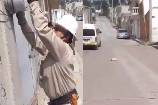 trabajadores_CFE_atropellan_perrito_tlaxcala