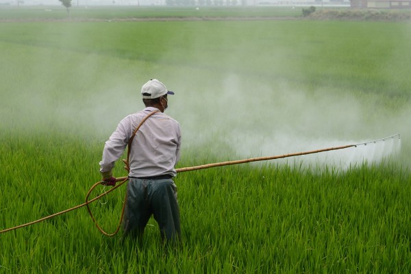 pesticidas_gobierno_federal_alta_peligrosidad