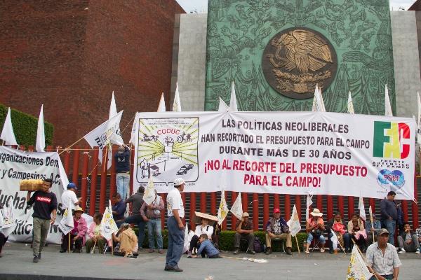 Campesinos de diferentes organizaciones se manifestaron afuera de la Cámara de Diputados, en demanda de más recursos para el campo mexicano para el presupuesto 2020. FOTO: ANDREA MURCIA /CUARTOSCURO.COM