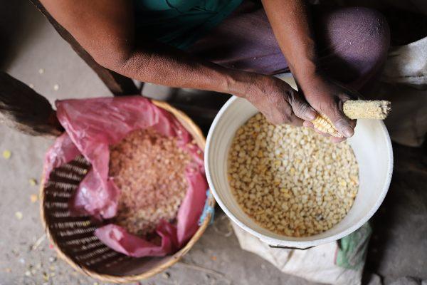 El 78.7 por ciento de las mujeres trabaja en actividades agrícolas. Foto: CUARTOSCURO