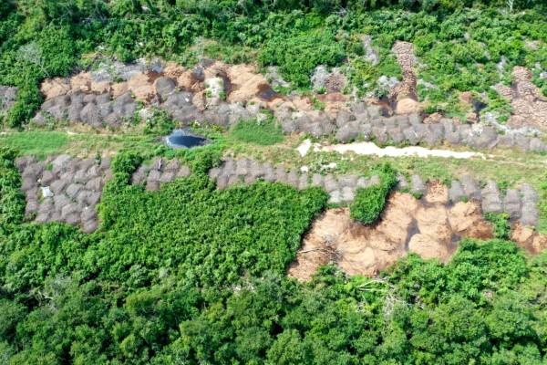 Mega-granja de ganado bovino que contamina el aire en Yucatán. Foto: Especial