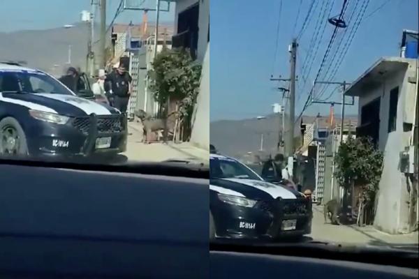 Uno de los policías municipales saca una pistola y le apunta al animal. Foto: Especial