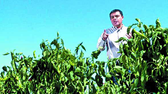 PROYECTO. José Luis García trabaja para fortalecer el cultivo de varias especies del país. Foto: Ignacio Mendívil
