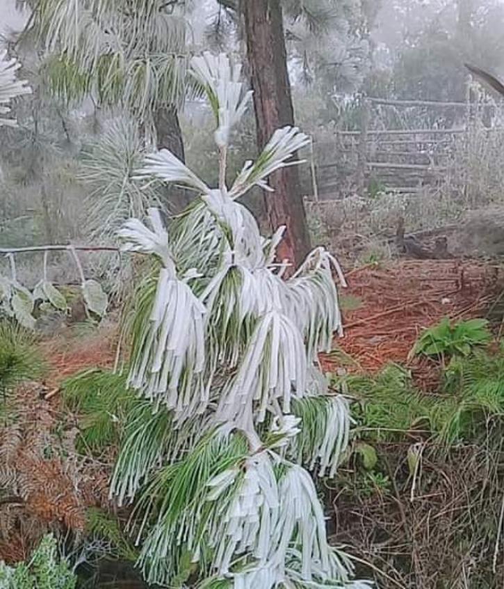 Frío en Puebla