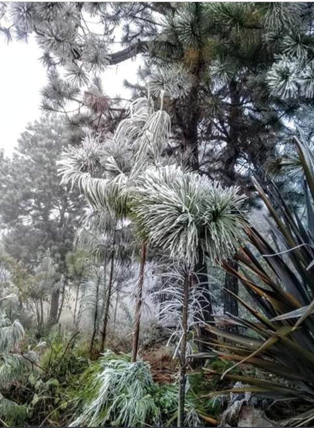 Frío en Puebla.