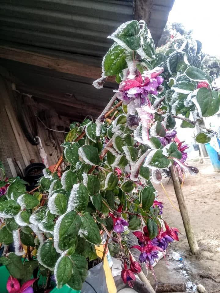 Frío en Puebla. Foto: C3 Noticias