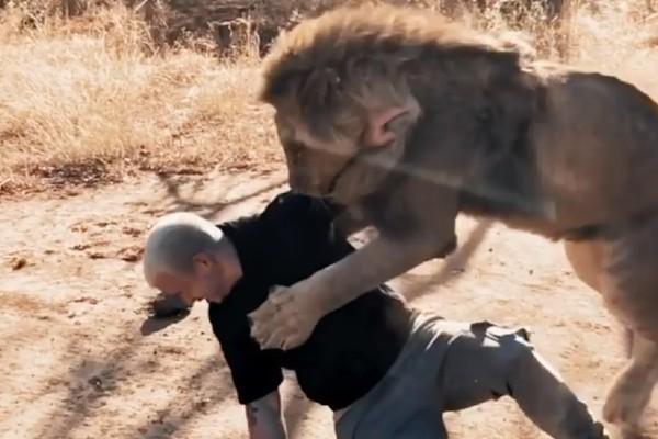 leon-caza-joven-video