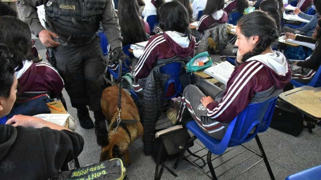 operativo-mochilas-seguras-binomios-caninos-estado-mexico-escuelas