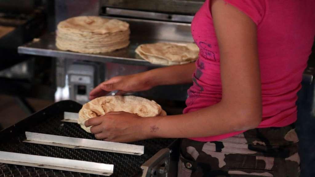 precio tortilla profeco