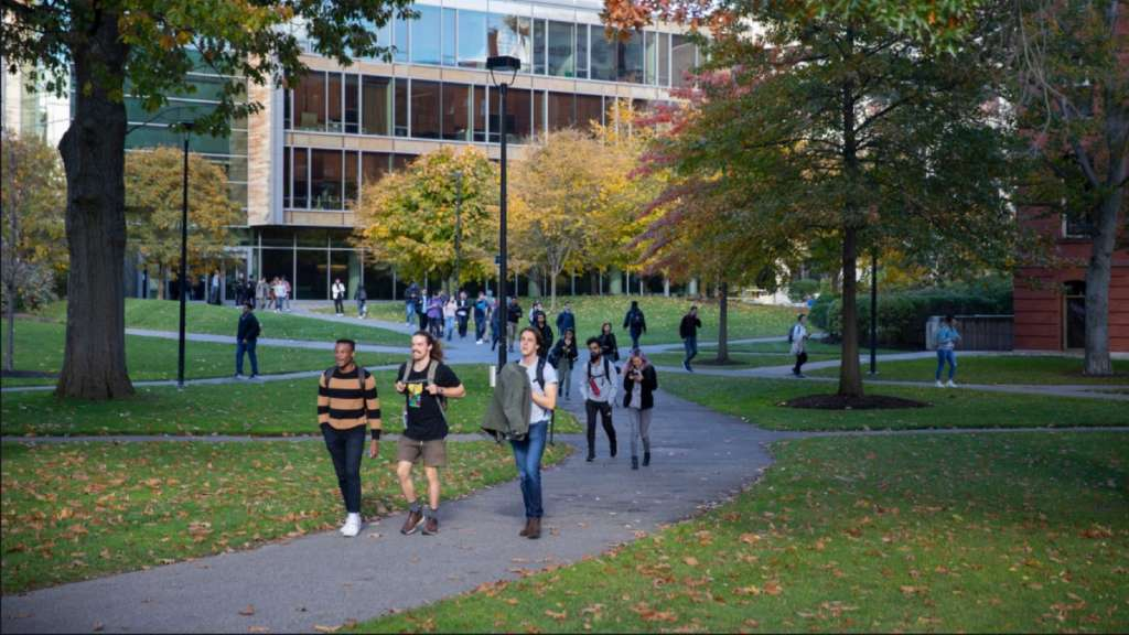 harvard-universidad