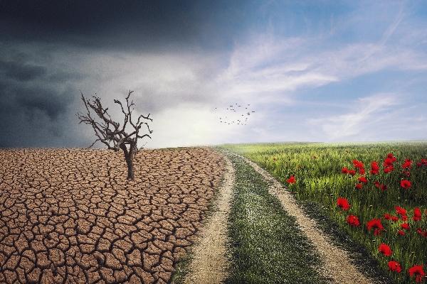 davos-2020-fundacion-mexicana-educacion-cambio-climatico-medio-ambiente-ninos