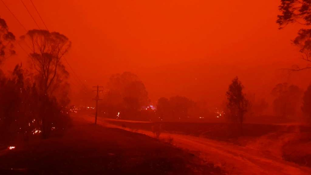 isla-canguro-onda-de-calor-incendios