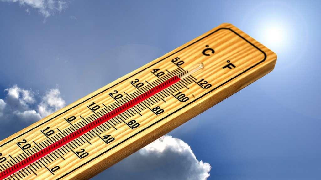termometro enero 2020 mas caluroso