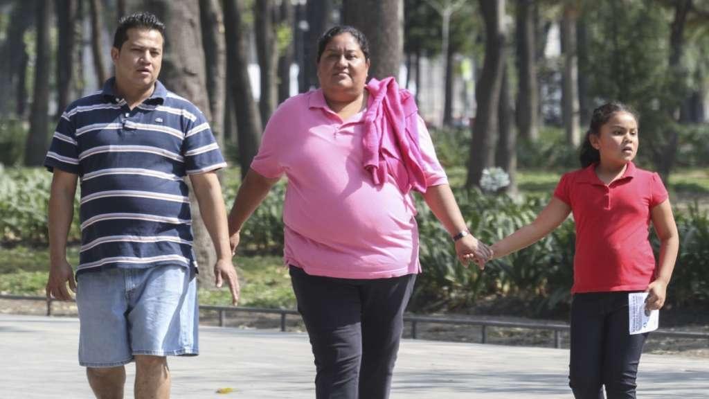 obesidad infantil etiquetado congruencia familiar nutricion