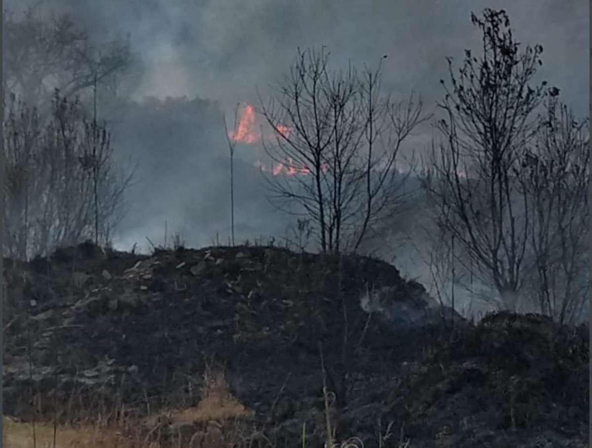 incendio-alvaro-obregon