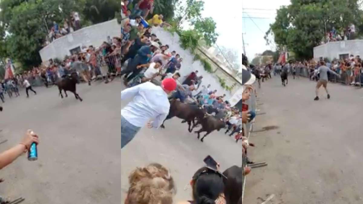 yucatan-toros-temaxeada-temax-maltrato-animal