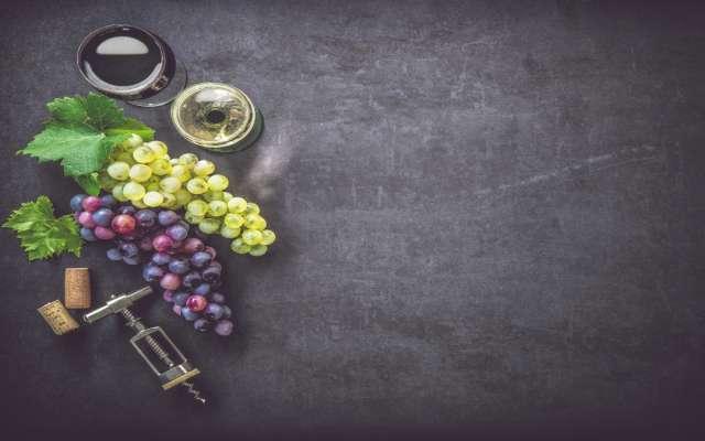 TOMA NOTA. En función del recipiente que elijas para disfrutar del vino, el sabor puede cambiar y, con él, la percepción que tenemos al beberlo. Foto: Especial