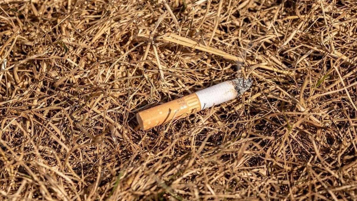 colilla-cigarro