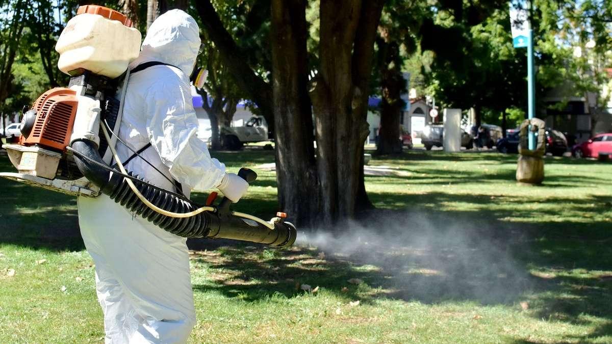 Descubren_nuevo_mosco_transmisor_dengue