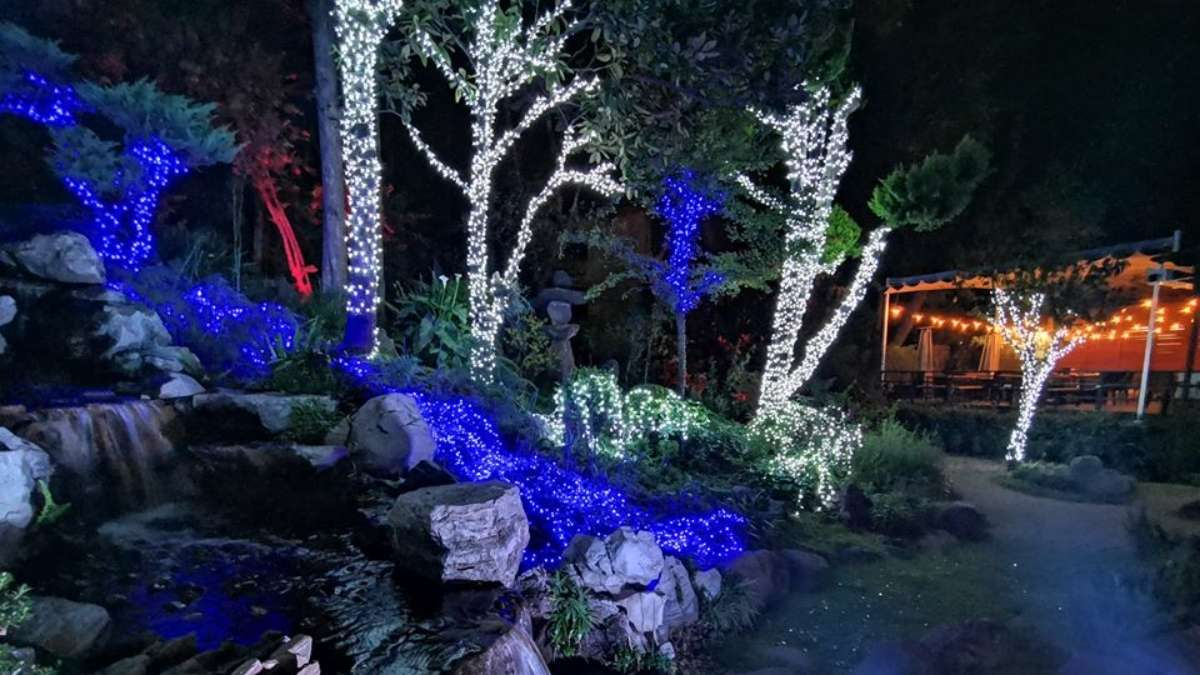 Lights of Japan