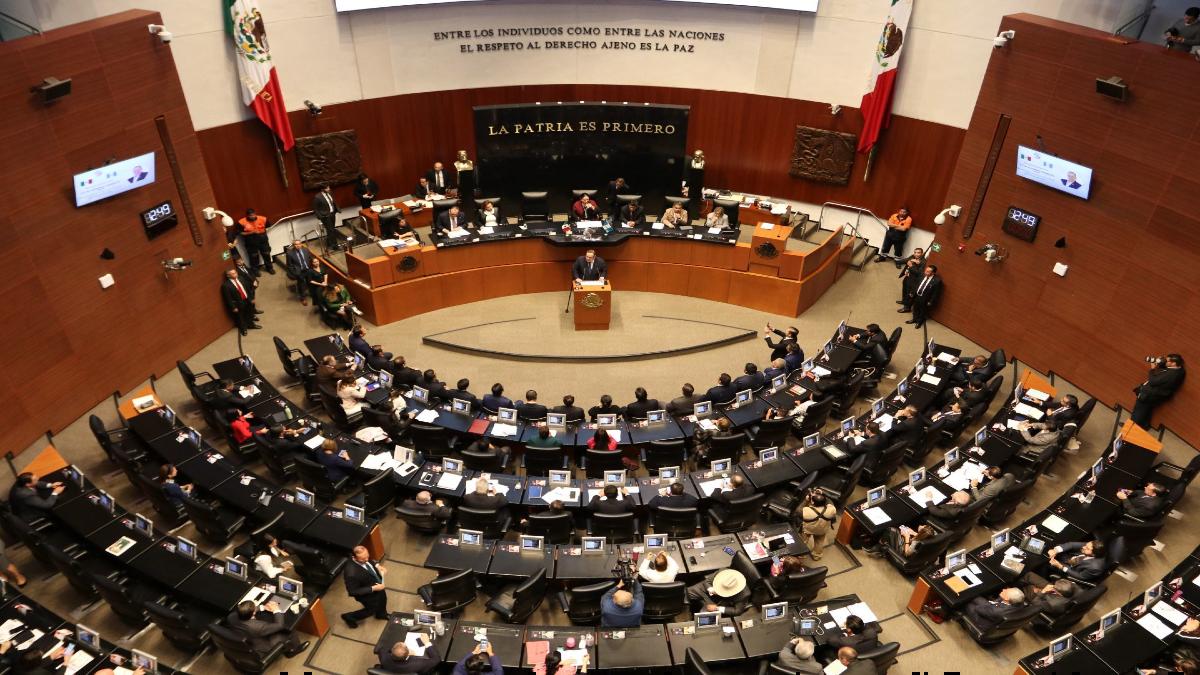 En una segunda votación y con 91 apoyos de senadores, Guadalupe Escalante Benítez fue electa para comisionada para los próximos siete años Foto: Cuartoscuro