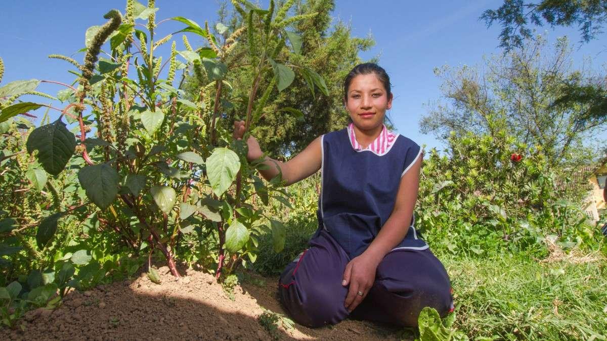 sader-produccion-para-el-bienestar-programa-mujeres-beneficiarias