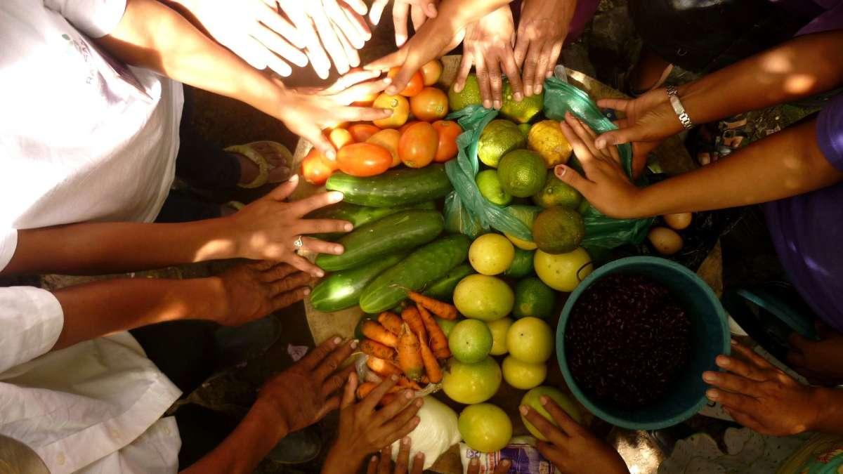 agricultura COVID-19 abasto alimentos