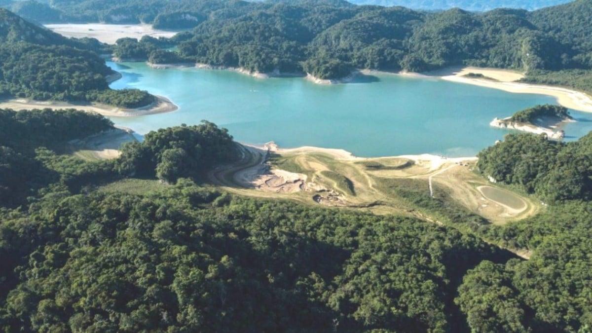 UNAM revela que solo queda el 10 por ciento de selvas originales de México