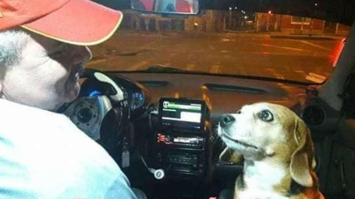 taxista princesa historia