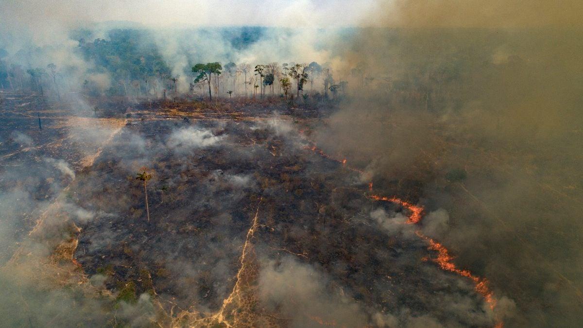incendio_brasil_zona_jaguares